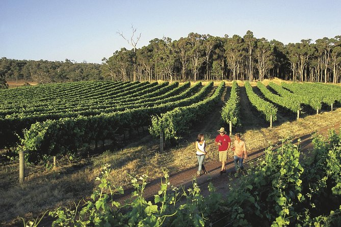Margaret River Caves Wine and Cape Leeuwin Lighthouse Tour from Perth - Gold Coast Attractions