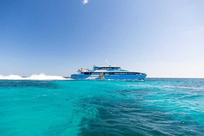 Fremantle to Rottnest Island Roundtrip Ferry Ticket - Gold Coast Attractions